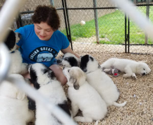 a young lady with nice adorable puppies