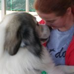Shannon hugginga Great Pyrenees face to face,