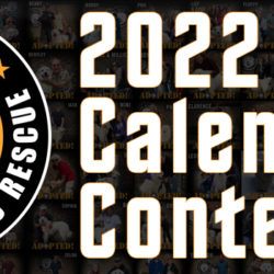 2022 CGPR Calendar Contest